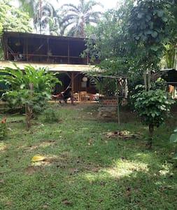 quite caribbean guest house