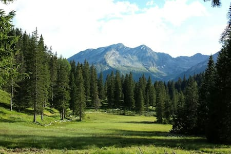 Bungalow e natura, sito turistico! - Blockhütte