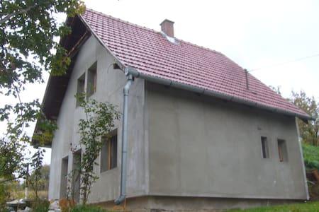 Pécsvárad, Dombay-tó - House