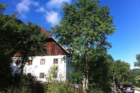Traum im Salzkammergut - Lakás