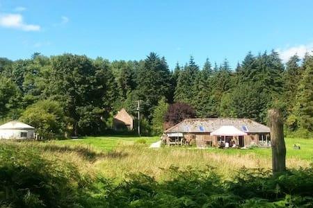 Wyldwoods Countryside Retreat - Yurt