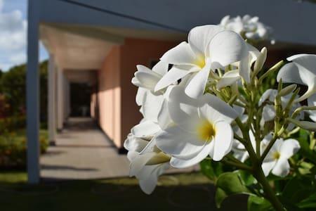 Casa com 4 suítes no Condomínio Água - Guarajuba - Camaçari - House