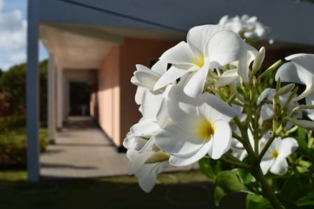 Casa com 4 suítes no Condomínio Água - Guarajuba - Camaçari