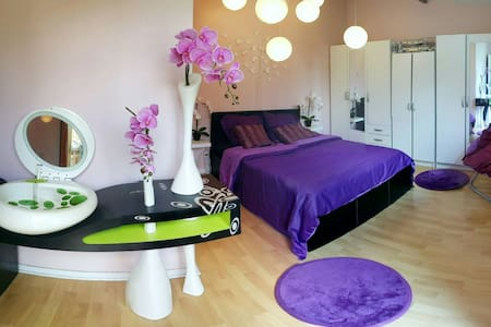 Chambre 20 mn Paris, 30 mn Disney - Chelles