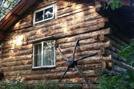 Naarismaa little house - Rumah