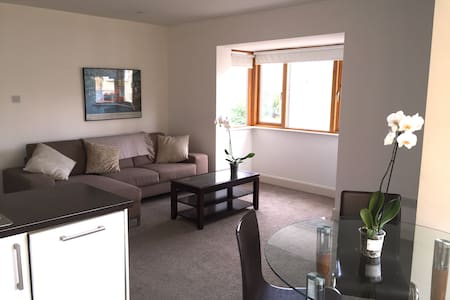 Modern Two bedroom apartment in Dun Laoghaire - Dublin - Apartment