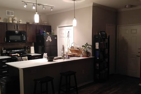 Entire Apt available for group/solo - Austin