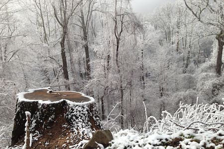 Great location Smoky Mountains - Knoxville - House