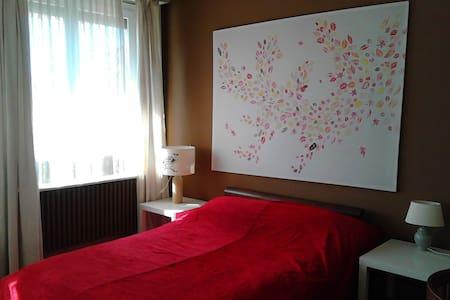 Big sunny bedroom with balcony - Geneva - Apartment