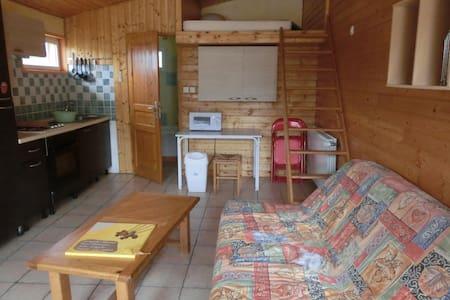 studio de 25 m2 - Saint-Lager-Bressac - Apartament