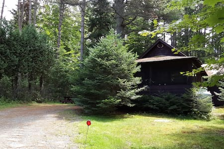 Authentic 1920 Adirondack Cabin - Hytte