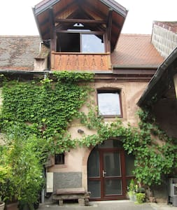 Rental on the wine route of Alsace - Rumah