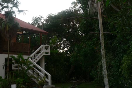 The Big House at Truestay Jamaica - Haus