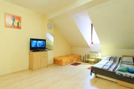 Masaryka apartment