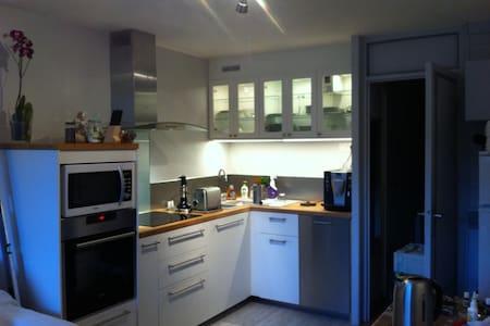 Appartement 2 pièces refait à neuf plein sud - Leilighet