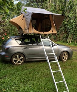 hatchback with amazing rooftop tent - Kapaa - Camper/RV