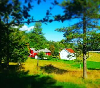 Third floor in charming farm house. - Tørdal