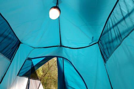 Camping in Munnar at Ela Ecoland Nature Retreat - Tenda