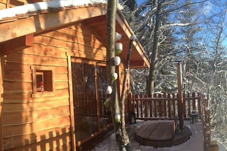 Cabane dans les arbres avec spa - La Thuile