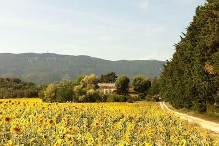 18th Century Bastide Luberon region Provence - House