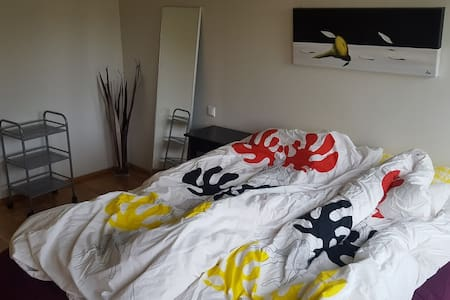 10 minutes walk from downtown. 2 bedrooms. Cosy. - Reykjavík - Apartment