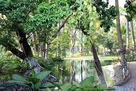Fin descansando en  Albercas naturales y jardines - Huoneisto