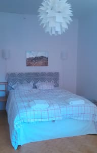 A spacious, bright bedroom in city centre - 公寓