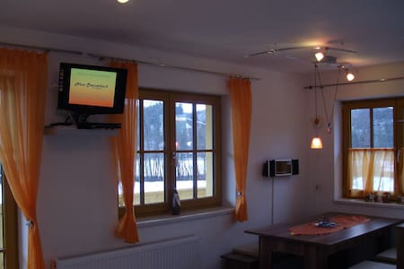 Haus Steinerbach KAISERBLICK - Oberndorf in Tirol - Apartmen