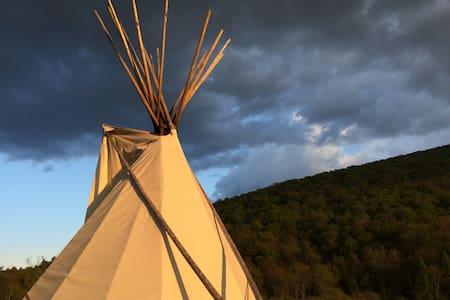 Mystic Lodge- Blue Jay Tipi - Bovina Center - Tipi