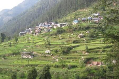 Himachal-Ghiyagi B&B Accommodation - Apartment