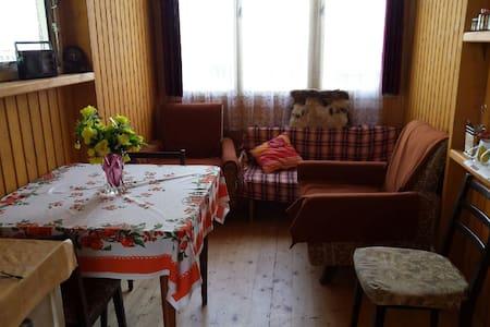Malá chatka na Vysočině( jen léto) - Brtnice - Hut
