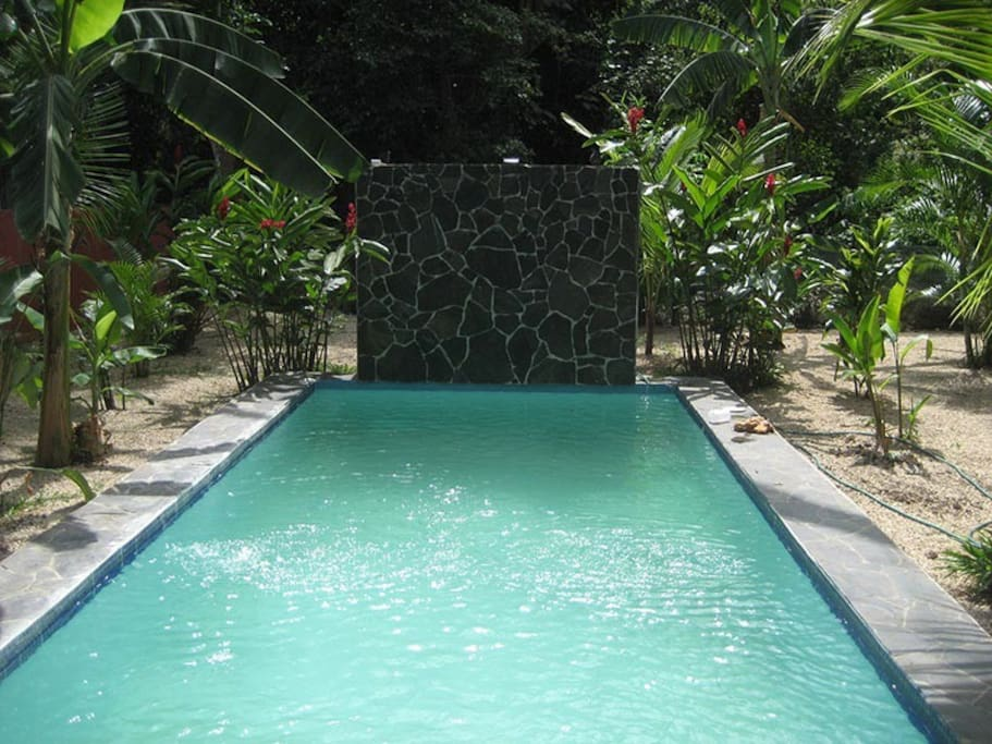 Complete privacy in your own tropical paradise!