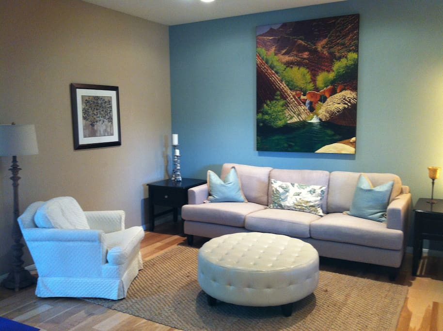 Cozy Modern Living room is perfect for conversation area