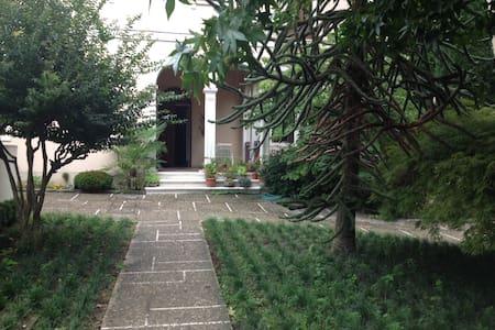 Natura e silenzio in città. - Vicenza