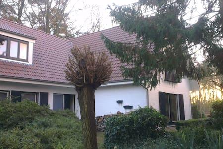 Large room (8m x 6m) with en-suite - Essen - Szoba reggelivel