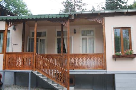 Borjomi Central Park guest house - Borjomi