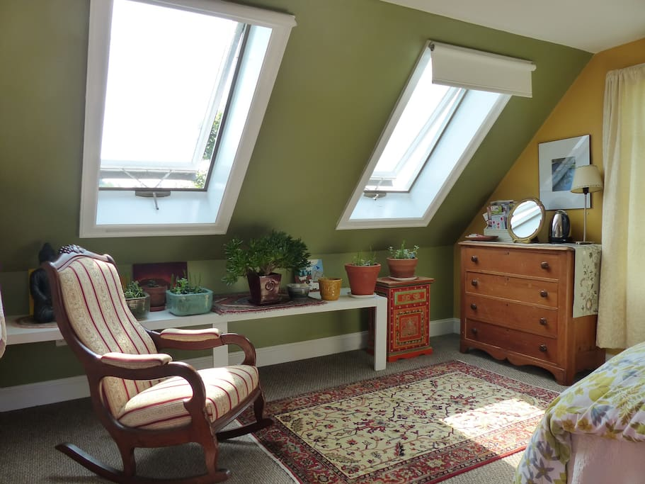 Sunny skylights and succulents