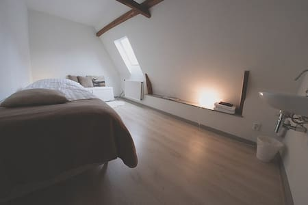 Sunny B&B in monumental building, room 1 (single) - Penzion (B&B)