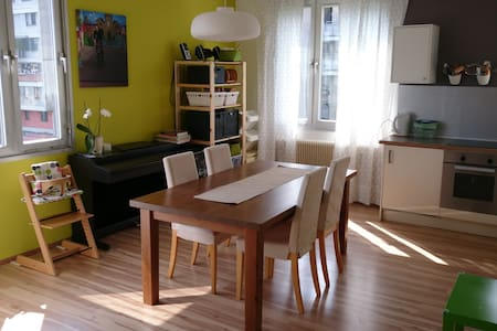Nice, sunny flat in quiet, green area - Apartment