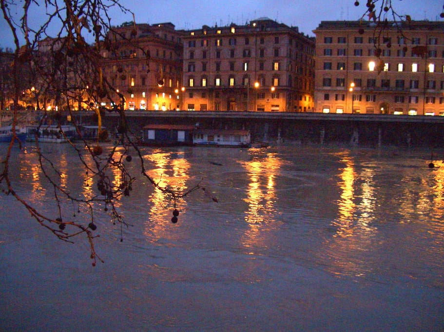 a night vision of the Tiber river... it's only a short walk to see it!