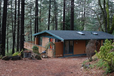 Cobb Mtn Home in the Trees - Rumah