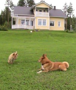 Villa Oikarainen in Rovaniemi - Villa