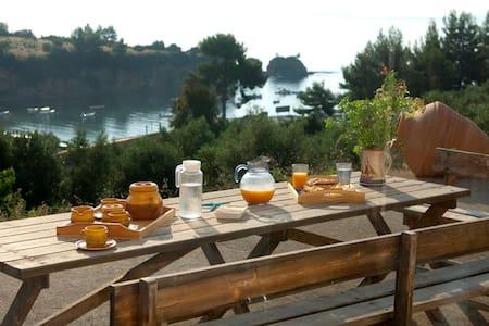 Gorgeous beach-front villa in Evia! - Kotsikia