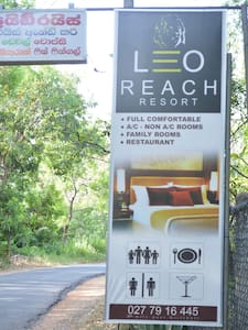 Leo Reach - Aamiaismajoitus