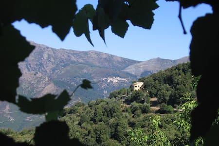 Maison typique  vue vallée du Golo - Hus