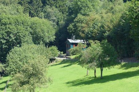Waldhaus am Rothaarsteig - Kirchhundem