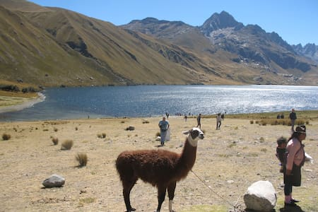 Private Room for Family - Huaraz - Apartment