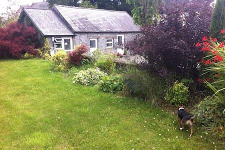 """""""Sonas"""" Stone Cottage Kilkenny - Casa"""