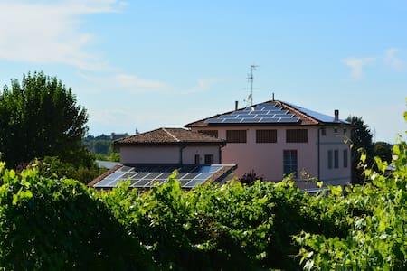Agriturismo Le Stanze di Bacco - Valsamoggia