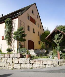 Ferienwohnung Hopfenscheune - Reichenschwand - Apartment